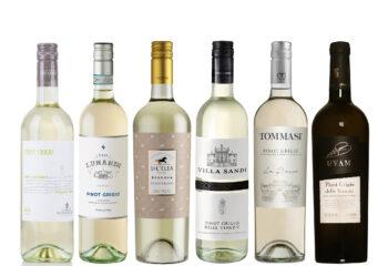 "Veinikast ""Pinot Grigio veinid"""